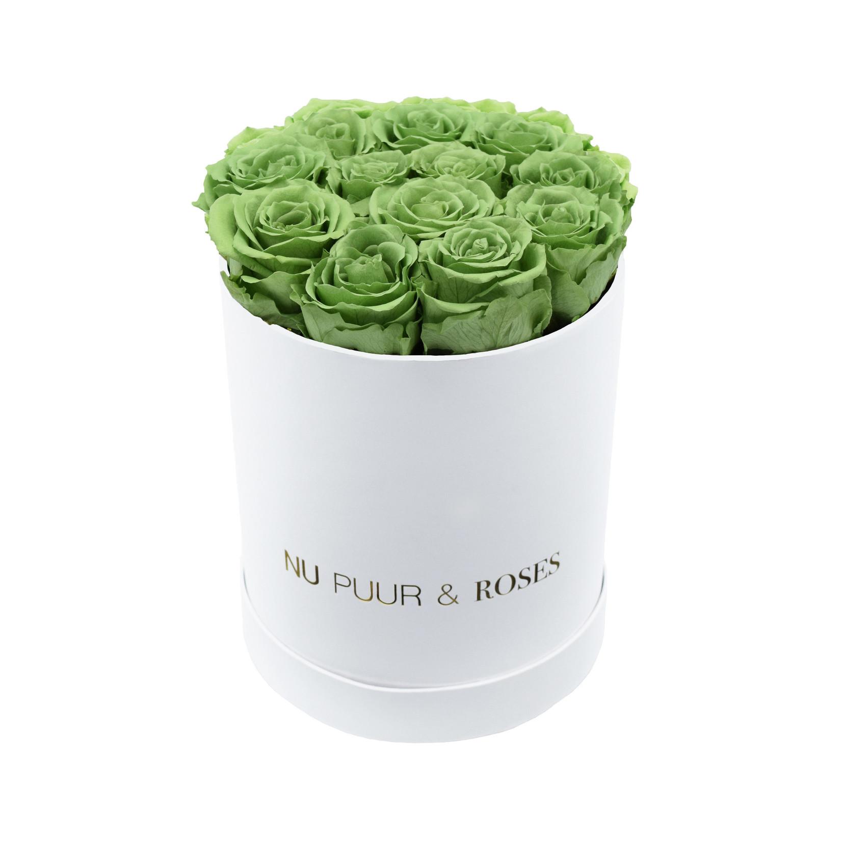 Small - Green Endless Roses - White Box