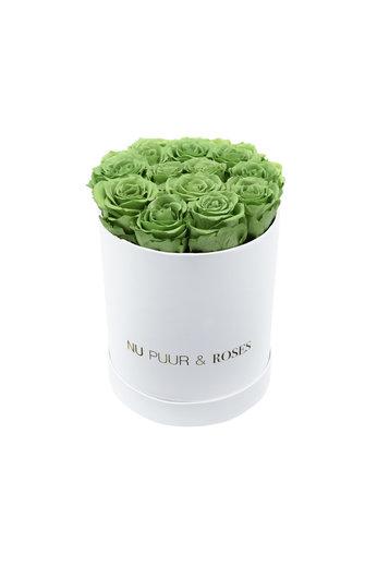 Small - Roses Éternel Vert - Boîte Blanche
