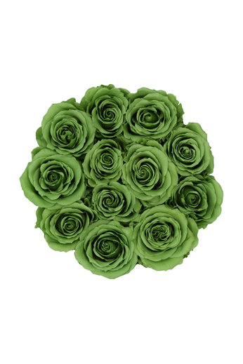 Small - Green Endless Roses - White Box