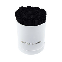 Small - Black Endless Roses - White Box