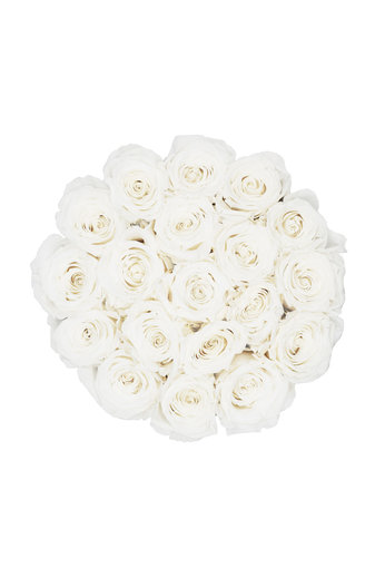 Medium - Roses Éternel Blanches - Boîte Blanche
