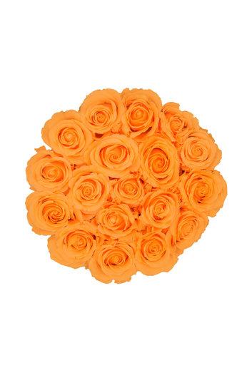 Medium - Peach Endless Roses - White Box