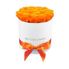 Medium - Roses Éternel Orange - Boîte Blanche