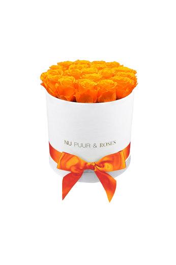 Medium - Orange Endless Roses - White Box