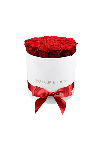 Medium - Red Endless Roses - White Box