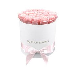 Medium - Pink Endless Roses - White Box