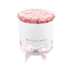Medium - Roses Éternel Rose - Boîte Blanche