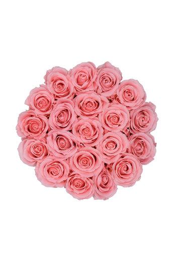 Medium - Pink Endless Roses - White Box