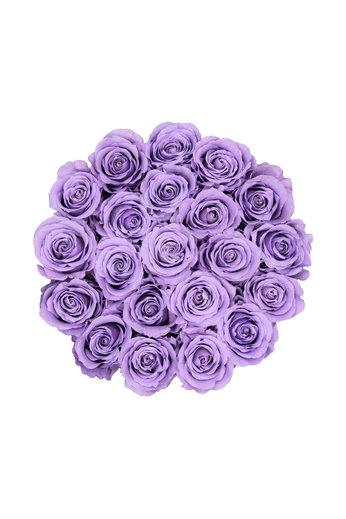 Medium - Roses Éternel Lilas - Boîte Blanche