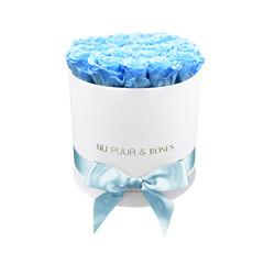 Medium - Roses Éternel Bleu - Boîte Blanche