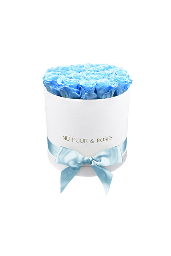 Medium - Blue Endless Roses - White Box