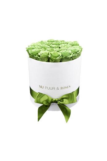Medium - Green Endless Roses - White Box