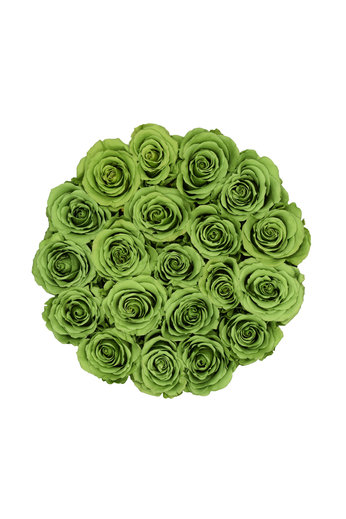 Medium - Roses Éternel Vert - Boîte Blanche