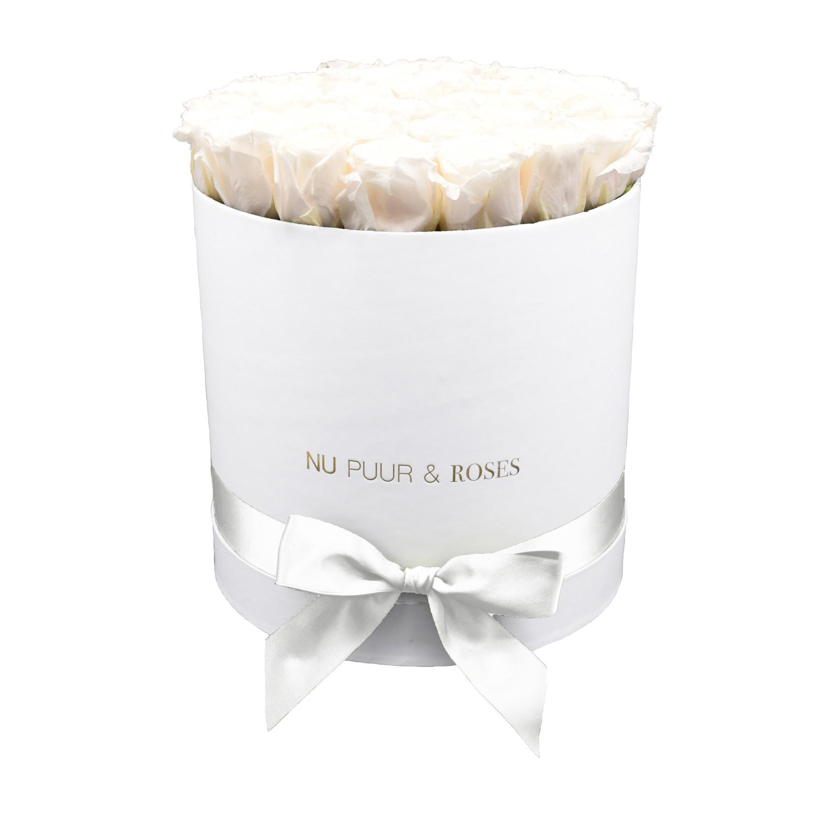 Large - White Endless Roses - White Box