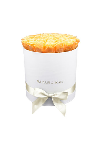 Large - Peach Endless Roses - White Box