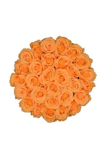 Large - Roses Éternel Pêche - Boîte Blanche