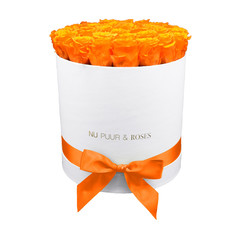 Large - Orange Endless Roses - White Box
