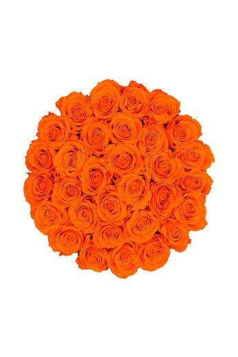 Large - Orange Endless Roses - White Box