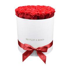 Large - Roses Éternel Rouge - Boîte Blanche