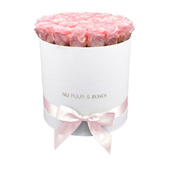 Large - Pink Endless Roses - White Box