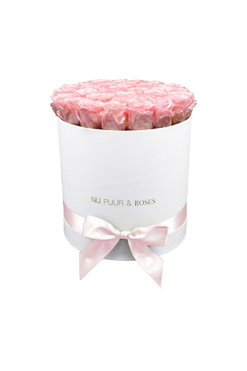 Large - Pink Endless Roses - White Box