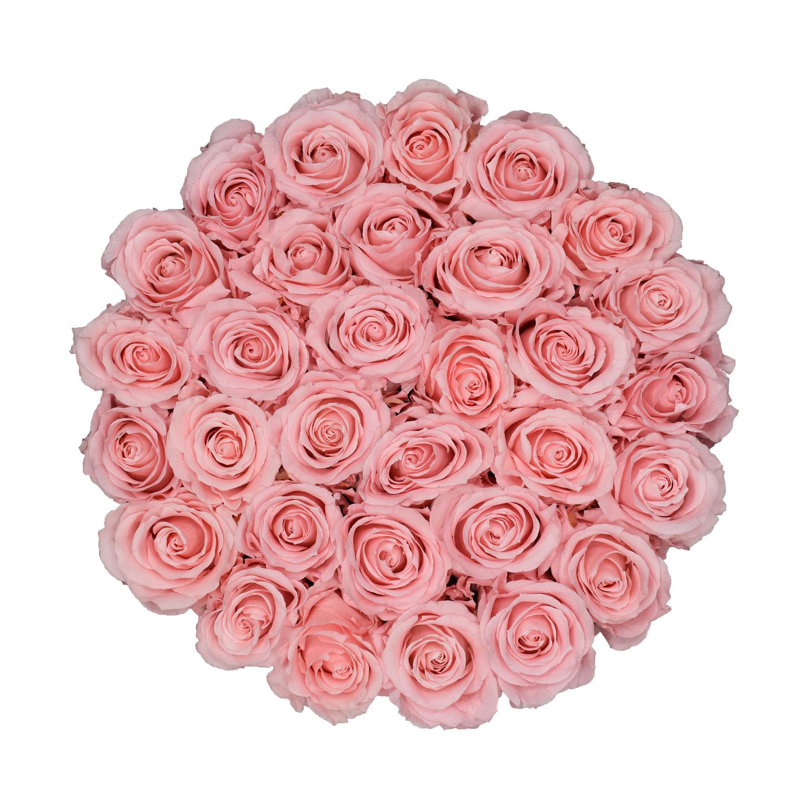 Large - Roses Éternel Rose - Boîte Blanche