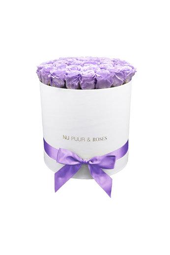 Large - Lilac Endless Roses - White Box