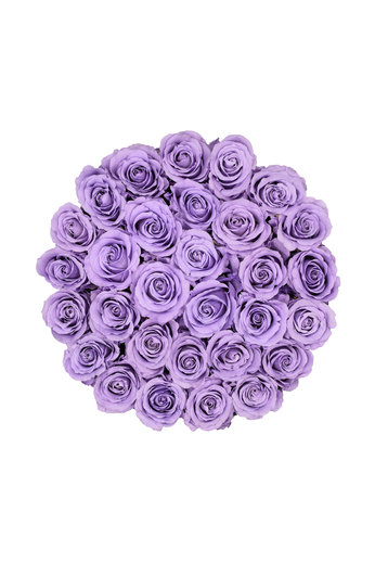 Large - Roses Éternel Lilas - Boîte Blanche