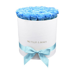 Large - Blue Endless Roses - White Box