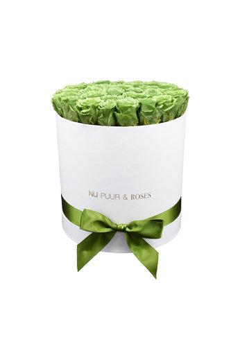 Large - Roses Éternel Vert - Boîte Blanche