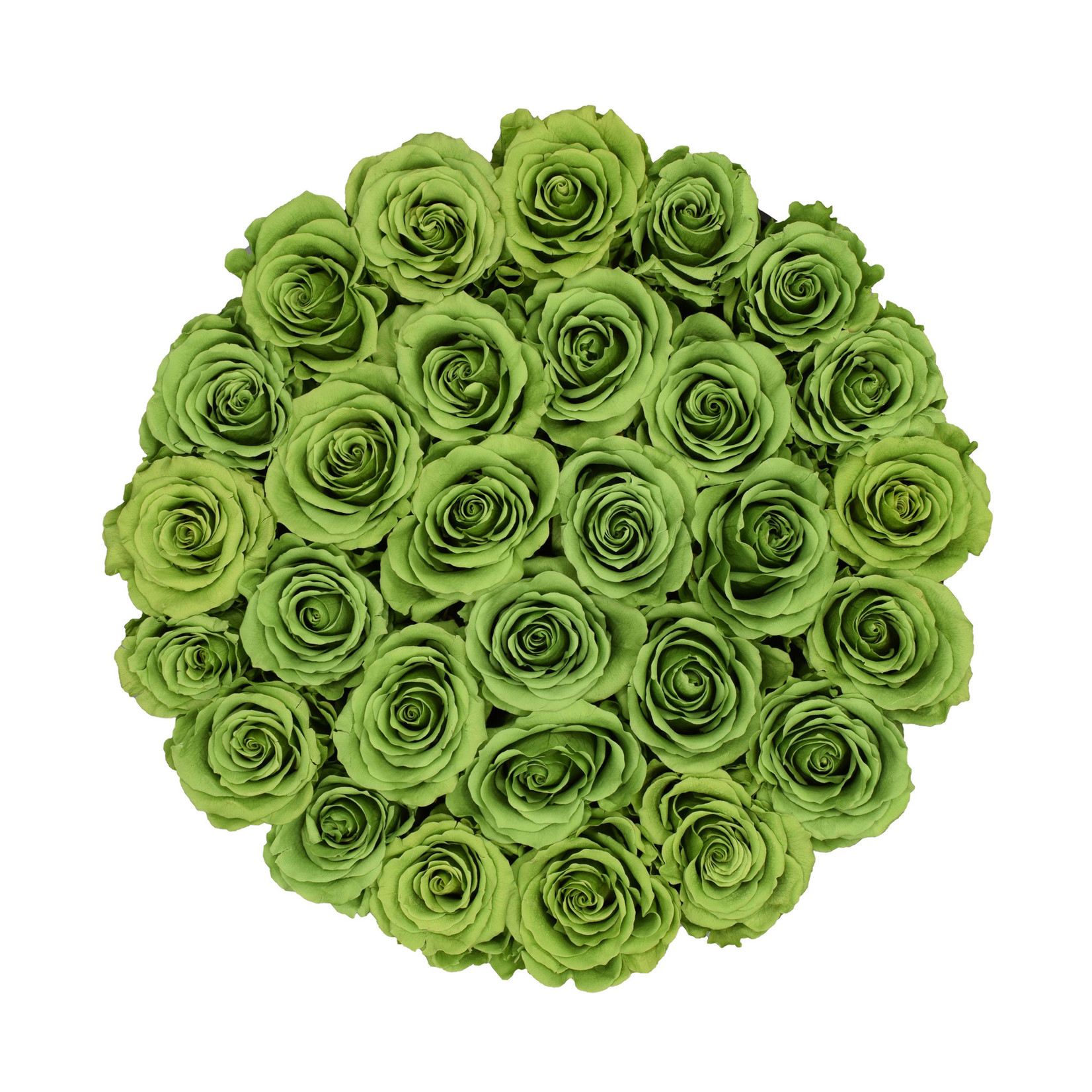 Large - Green Endless Roses - White Box