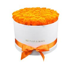 Extra Large - Roses Éternel Orange - Boîte Blanche