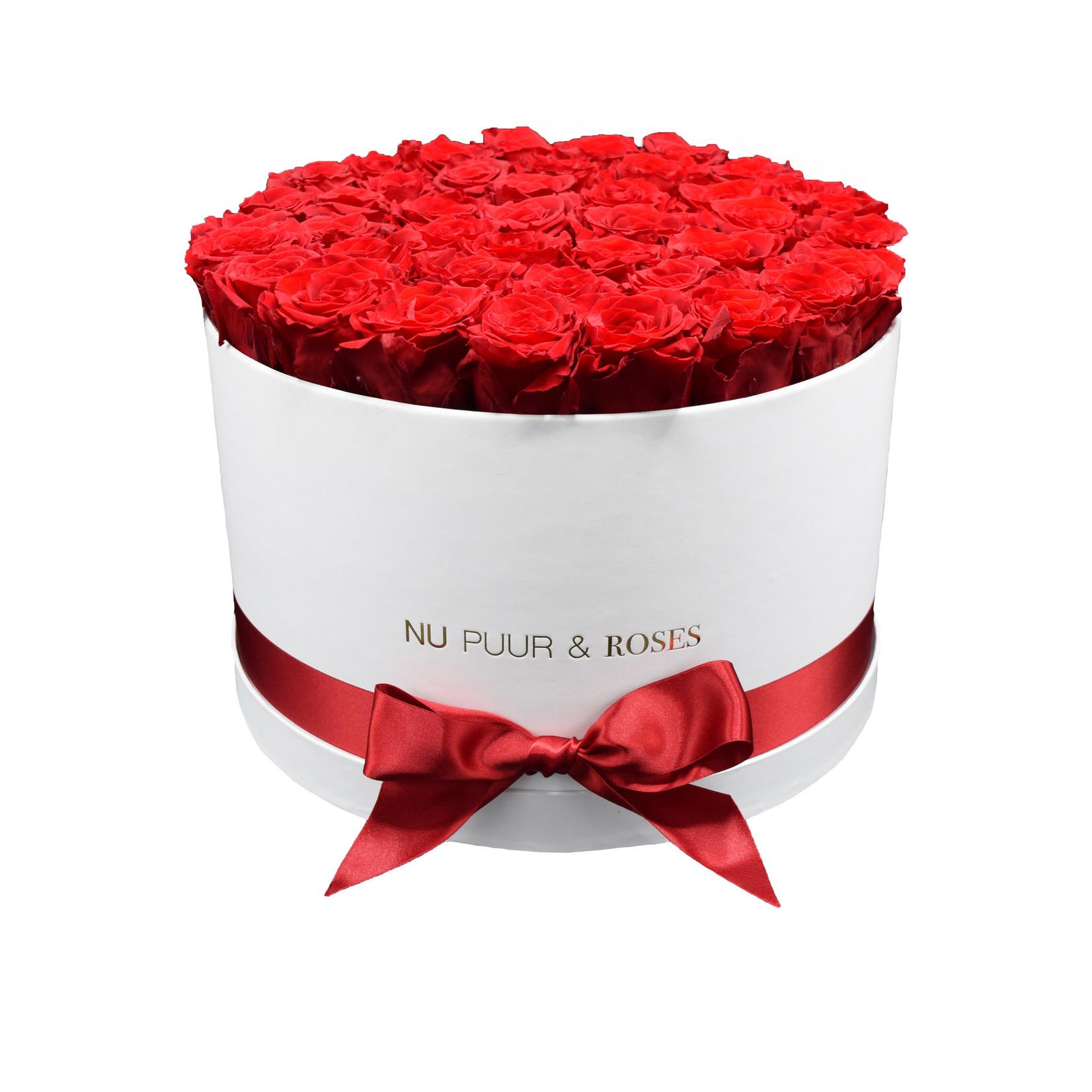 Extra Large - Roses Éternel Rouge - Boîte Blanche