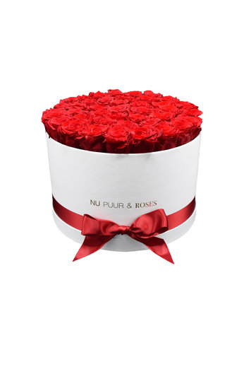 Extra Large - Red Endless Roses - White Box