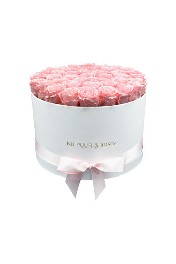Extra Large - Pink Endless Roses - White Box