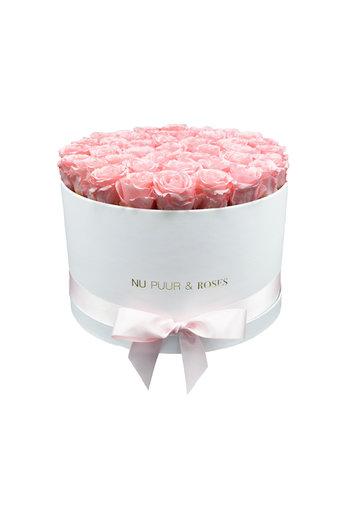 Extra Large - Roses Éternel Rose - Boîte Blanch