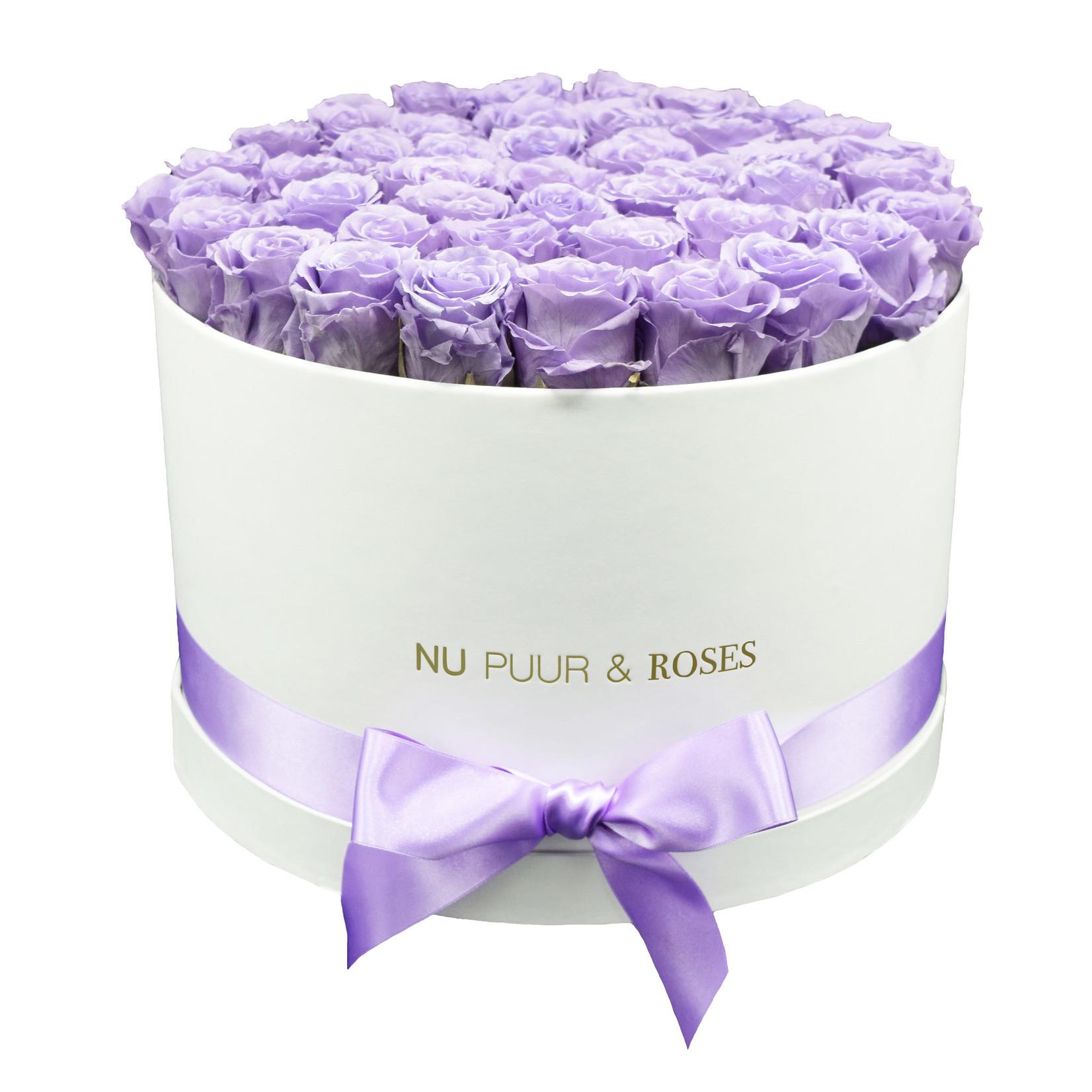 Extra Large - Lilac Endless Roses - White Box