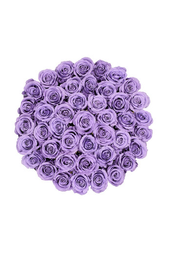 Extra Large - Lilac Endless Roses - White Box