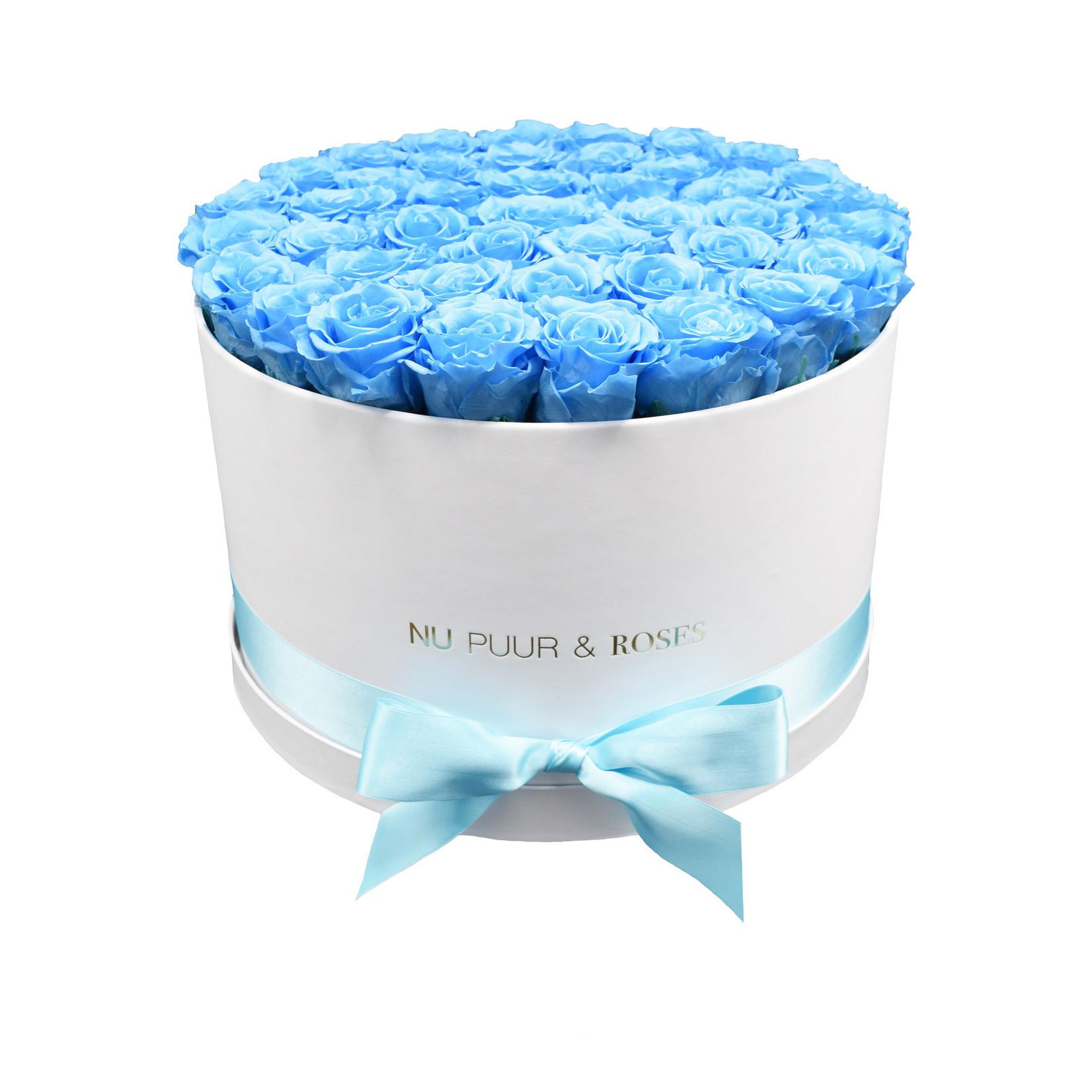 Extra Large - Roses Éternel Bleu - Boîte Blanche