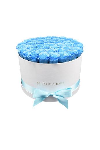 Extra Large - Blue Endless Roses - White Box