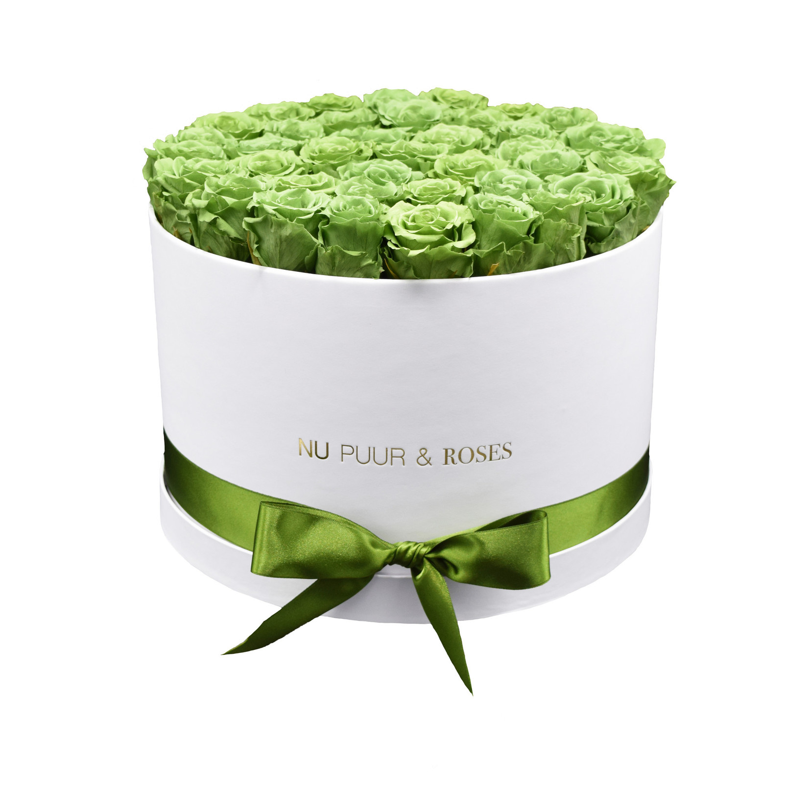 Extra Large - Green Endless Roses - White Box