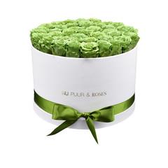 Extra Large - Roses Éternel Vert - Boîte Blanche