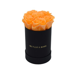 Mini - Peach Endless Roses - Black Box
