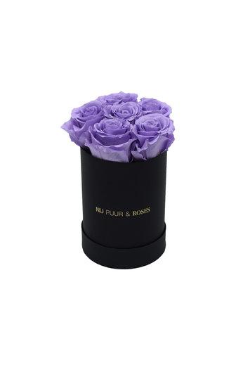 Mini - Lilac Endless Roses - Black Box