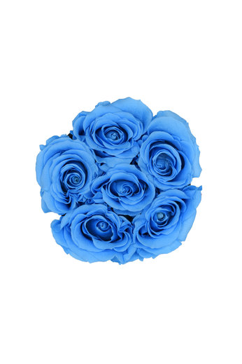Mini - Blue Endless Roses - Black Box