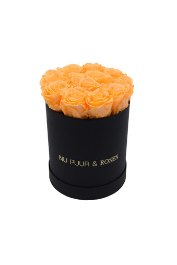 Small - Peach Endless Roses - Black Box