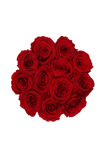 Small - Red Endless Roses - Black Box