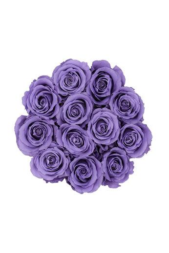 Small - Lilac Endless Roses - Black Box