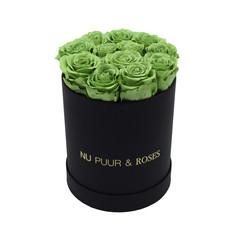 Small - Roses Éternel Vert - Boîte Noire