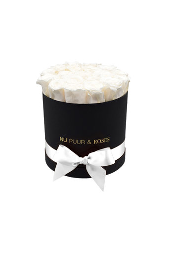 Medium - White Endless Roses - Black Box